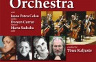 24 Oct 08 &#8211; The Ulster Orchestra conducted by Tnu Kaljuste &#8211; St.Peter&#8217;s COI Drogheda